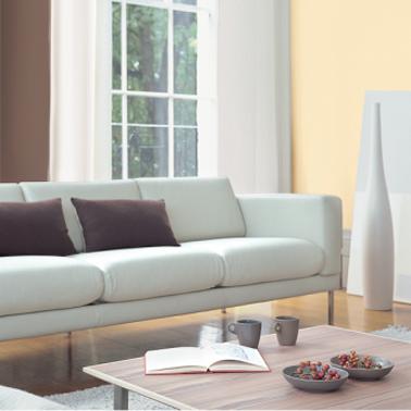 couleur peinture salon avec teintes naturelles pour une décoration de salon zen. Photo Astral