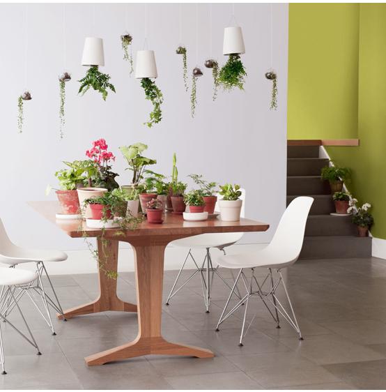 Salon couleur gris, entrée couleur vert olive