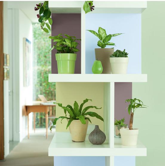 Un petit coin de jardin dans la maison avec la cloison de séparation entre le salon et la salle à manger peinte dans une douce harmonie de couleurs verte, de teintes naturelles et d'un bleu clair. Peintures Bleu Fjord, Amande douce, Bûche, Eclat de vert  Dulux Valentine