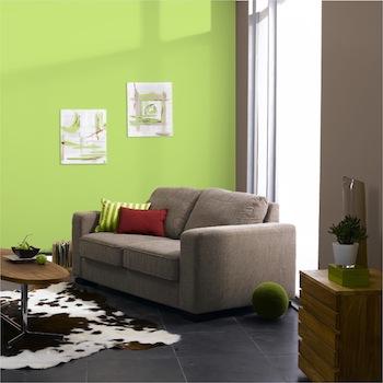 Salon couleur taupe et vert anis, blanc et beige