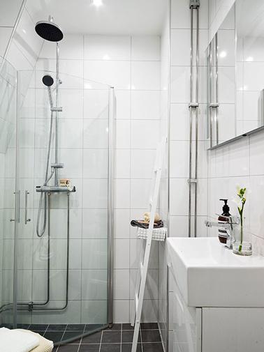 Déco d'une petite salle de bain avec  du carrelage blanc sur haute la hauteur des murs et paroi de douche posée en angle pour gagner de la place