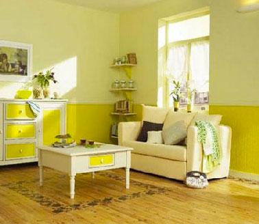 Dans ce salon, le tapis peint directement sur le parquet bois chêne clair avec une peinture pour sol et un pochoir frise souligne la fraicheur de l'harmonie couleurs jaune et ivoire.