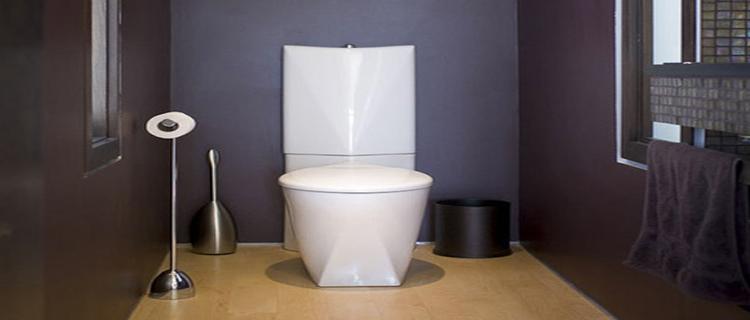 peinture WC idee déco pour WC design et originale