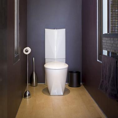 Déco WC design avec peinture prune, sol parquet flottant chêne clair et accessoires WC inox