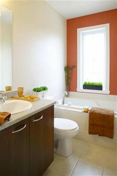 Un coup de Peinture couleur rouge terre sur le mur de la baignoire, complétées de touches de marron et de vert pour donner un coup de peps à la salle de bain sans tout changer