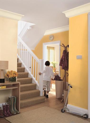 Laissez entrer le soleil avec ce nuancier. Associez une peinture jaune tournesol avec un raffiné beige crème donne une ambiance estivale et chaleureuse à la pièce. La peinture foncé ocre s'accordera quant à elle à merveille avec des couleurs plus en retenue comme le jaune pastel.