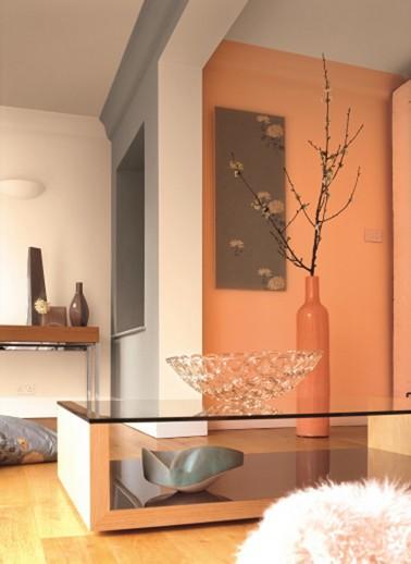 une ambiance orangée  avec cette peinture salon. Une couleur généreuse à associer avec une peinture grise pour un salon moderne et lumineux