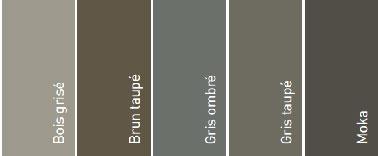 5 couleurs pour peindre une terrasse bois : Bois grisé,  Brun  Taupe, Gris Ombré et Moka de V33