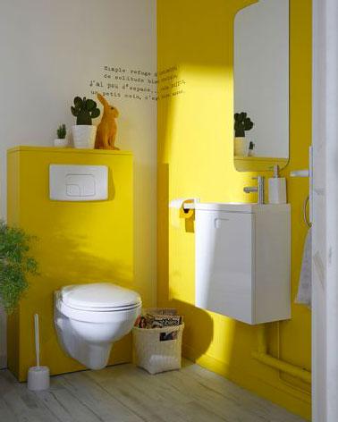 Déco pop avec une peinture jaune dans les toilettes : Peinture multisupports Architecte Dulux Valentine Couleur Carton Jaune satin, 0.5L prix : 9.95 € Leroy Merlin.
