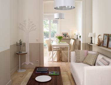 Dans ce petit salon esprit déco nature zen tout en longueur, l'astuce réside dans la peinture lin clair et beige taupe du mur. Les couleurs claires agrandissent l'espace.