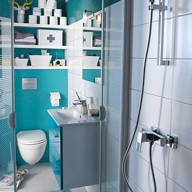 mic, acest albastru Baia cu WC este ideală cu un plan compact de bazin cubic și în special rafturi mari de depozitare.'agence idéalement grâce à un plan vasque cubique compact et surtout des grandes étagères de rangements.