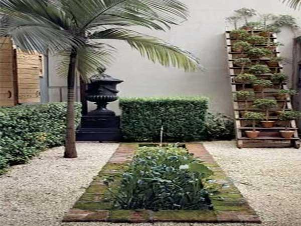 Patio de plantes vertes et palmiers créent ce jardin zen. Les plantes vertes posées sur un échelle en bois contre le mur et la statue ornementale font toute l'originalité de ce jardin.
